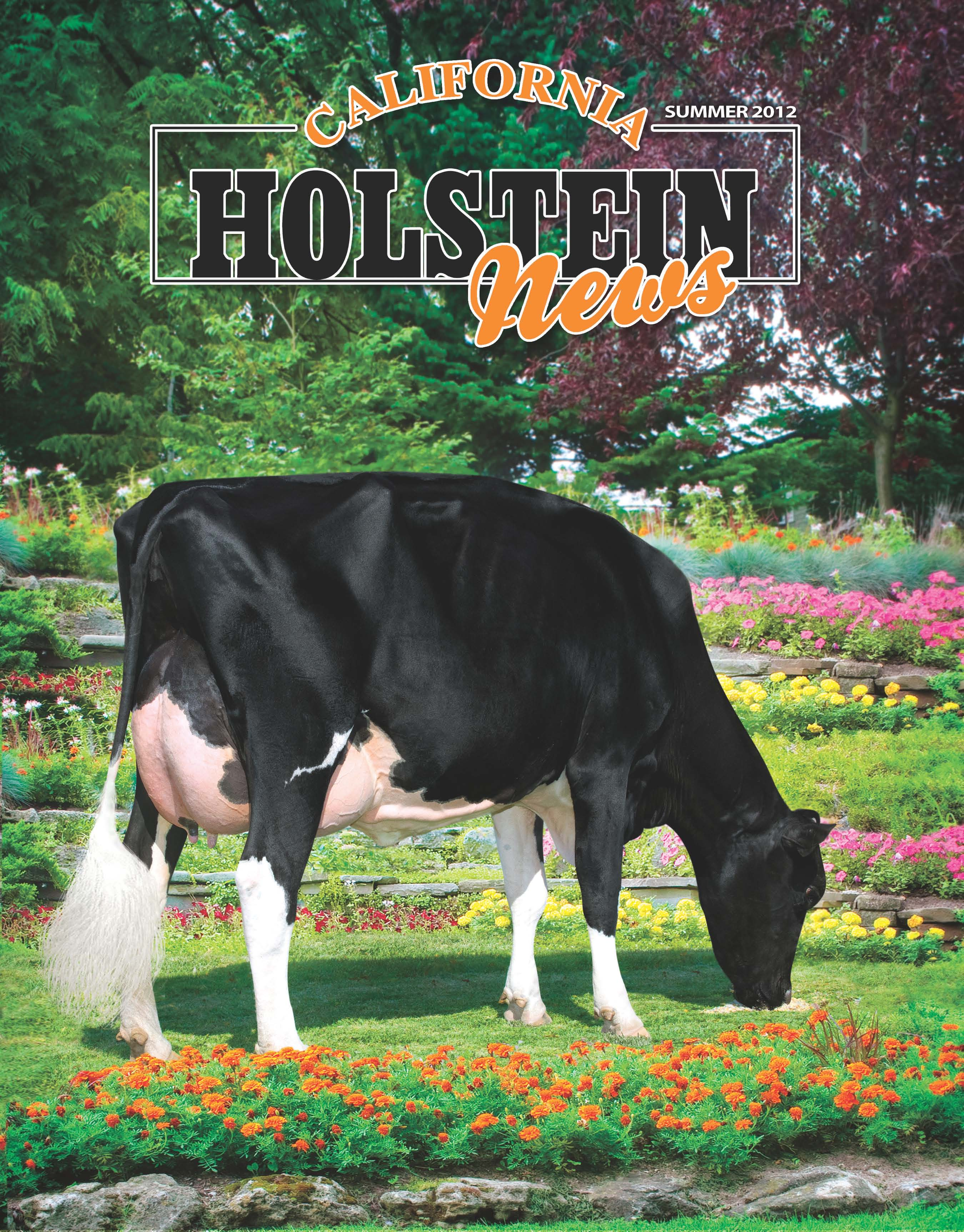 2012 California Holstein News